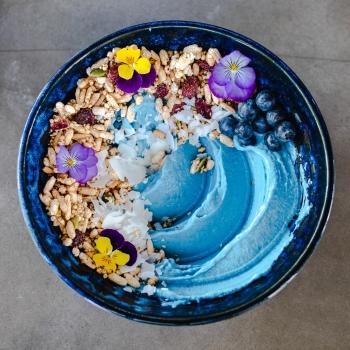 Concrete-Jungle-Blue-Bowl